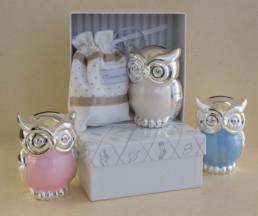 Owl Money Box:-0